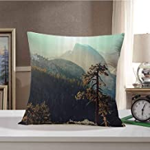 Farm House Decor Soft Decorative Throw Pillows Covers Yosemite National Park from The Top of Mountain Misty Morning Landscapes Photo Cushion Cases for Couch Living Room 20 x 20 Inch Teal Brown