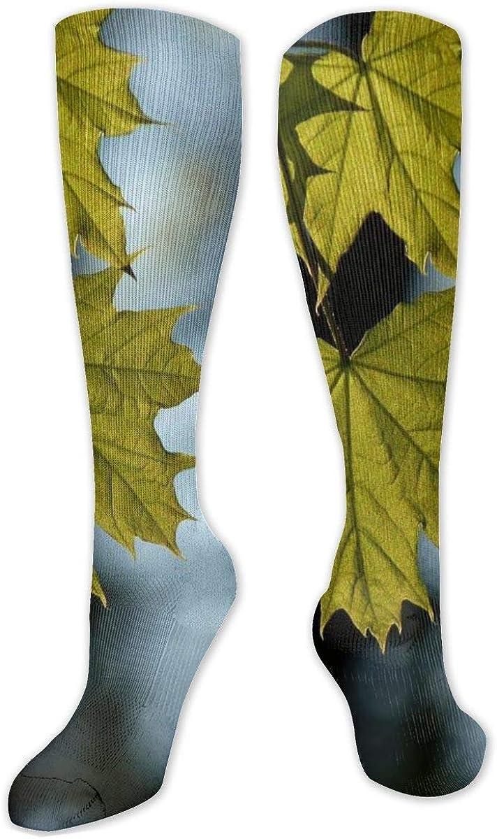 Yellow Maple Leaf Blur Knee High Socks Leg Warmer Dresses Long Boot Stockings For Womens Cosplay Daily Wear