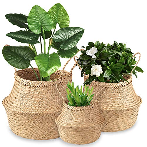 DeeCoo 3 Pack Foldable Woven Seagrass Plant Basket with Handles, Ideal for Storage Plant Pot Basket, Laundry, Picnic, Plant Pot Cover, Beach Bag,Grocery Basket and Toy Storage