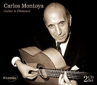 Guitar and Flamenco