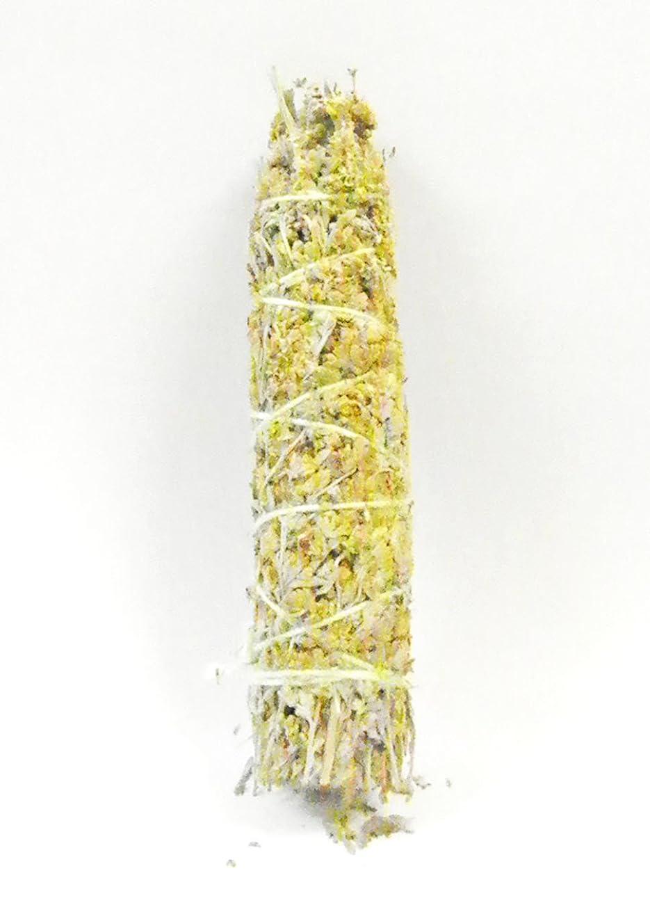 胆嚢種スイス人ブルーセージ 浄化用 約45g 1束 無農薬 お香 パワーストーン [並行輸入品]