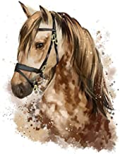 Arte Mural Paint By Numbers Horse Painting Animals Coloring Wall Art Picture Paint On Home Decor (/ X)