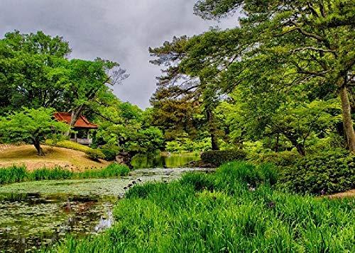 Japón Takamatsu Ritsurin Suministros De Jardín Estanque Verde Árbol Césped Muebles De Jardín 1000 Rompecabezas Rompecabezas Educativo para Niños Rompecabezas De Descompresión para Adultos