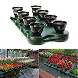 CORISRX BEST OF YOUR LIFESTYLE G&B 8Plugs /1pc Aquaponics Floating Pond Planter Basket- Hydroponic Island Gardens