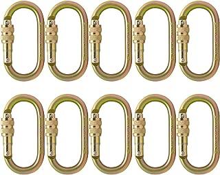 Fusion Climb Ovatti Steel Screw-Lock Oval-Shaped Carabiner 10-Pack