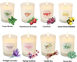 Scented Candles Aromatherapy Christmas Gifts Set Glass Jar Candle Luxury Natural Soy Wax Fragrance Essential Oils for Women Xmas Stress Relief Relaxation Birthday Gift