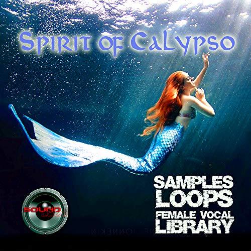 %60 OFF! Spirit of Calypso - Large original 24bit WAVE/Kontakt Samples/Loops Library