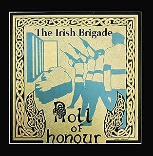 Best the irish brigade roll of honour Reviews