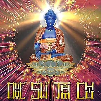 Dược Sư Tâm Chú (NDT Version)