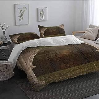 marriott renaissance pillows