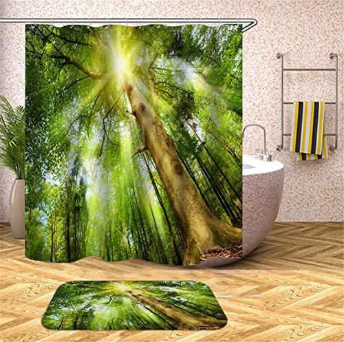 ZZZdz De Sole Splitter op het grote Alberi in het groene bos - Velluto - 40 x 60 cm - douchegordijn - 3D-druk HD - waterdicht - 180 x 180 cm - Decoraties voor uw huis