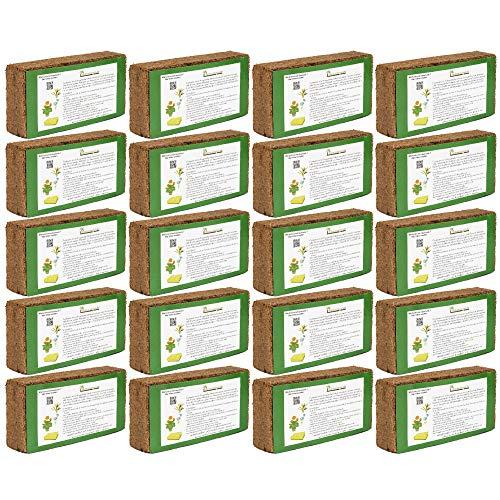 Humusziegel - 180 L Kokoserde - 20 x 650g - Anzuchterde - Blumenerde aus Kokosfaser - natürlich & torffrei - geeignet als Palmenerde, Erde für Zimmerpflanzen, Chili Erde, Pflanzenerde