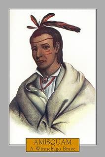 Amisquam - Portrait of a Winnebago Brave 30730 (12x18 SIGNED Print Master Art Print - Wall Decor Poster)