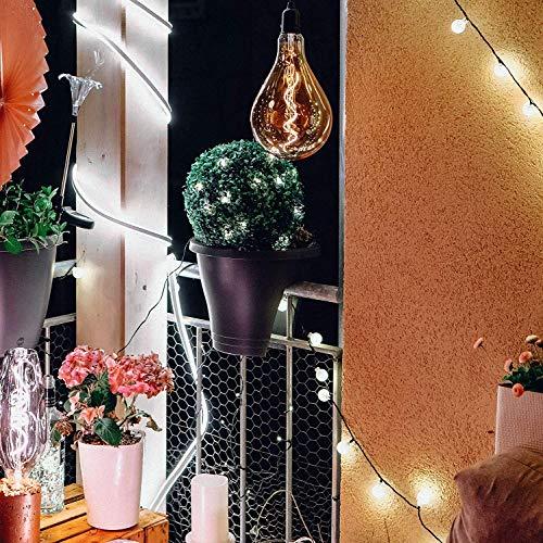 Hellum 350227 LED Buchsbaum-Kugel/Ø 25 cm / 30 LEDs warmweiß/innen & außen/Zuleitung 5 m grün/inkl. Außen-Transformator - 5