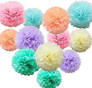 Best pastel tissue pom poms Reviews