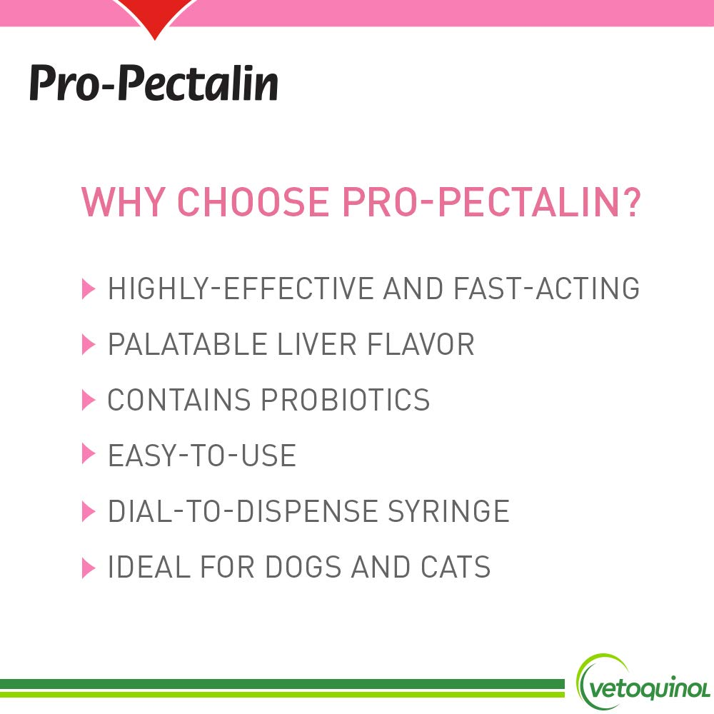 Vetoquinol Pro-Pectalin Tablets for Dogs & Cats – 250ct, Liver Flavor – Reduce Occasional Loose Stool, Balance Gut pH: Kaolin, Pectin, Enterococcus Faecium – Support Normal Digestion, Microbial Flora