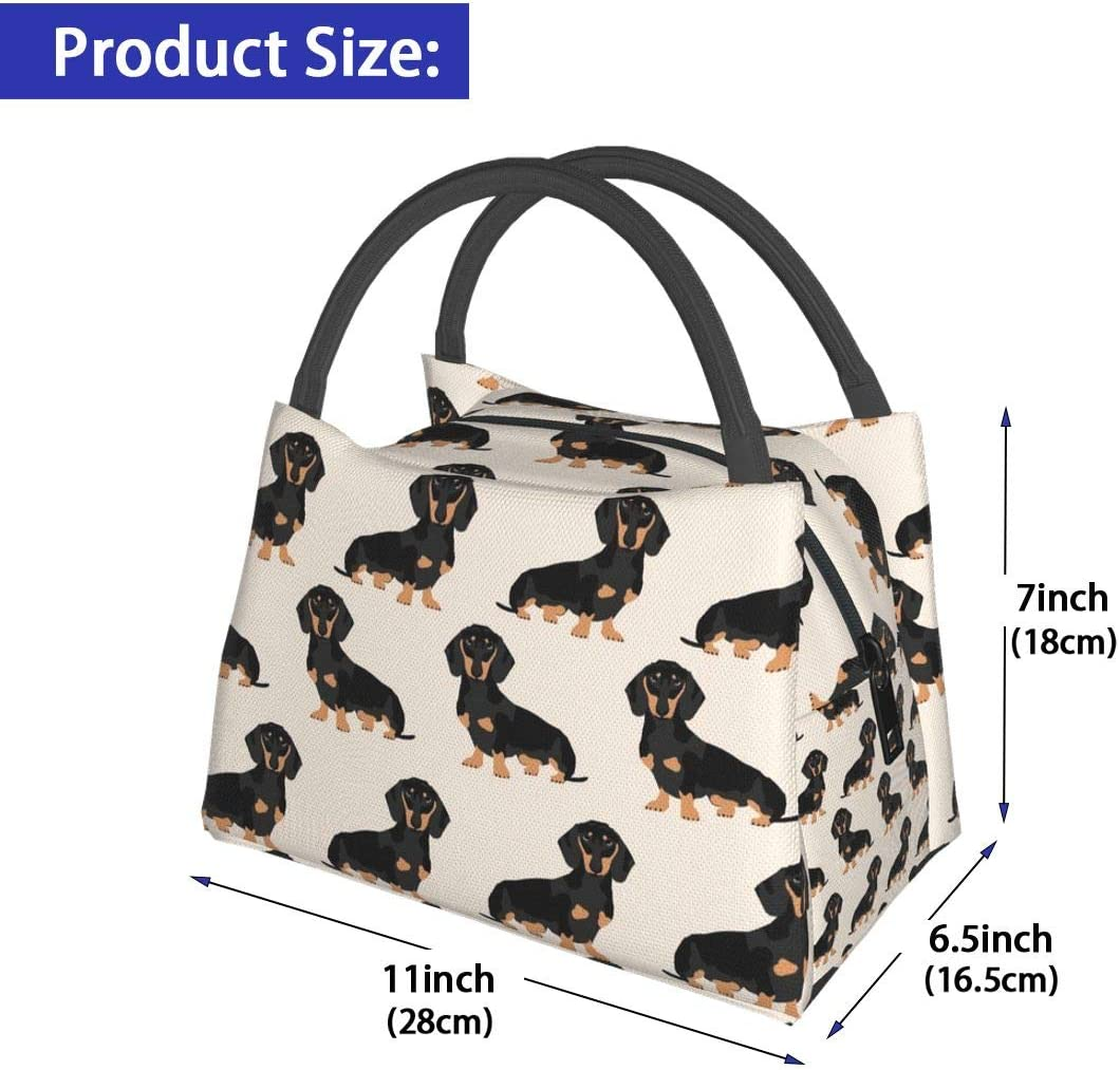 Usa Flag Reusable Insulated Lunch Box for Women Kids Multi-functional Tote School Lunch Bags Lunch Container for Women Men Work Picnic