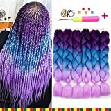 6 Pcs Braiding Hair Kanekalon Purple To Blue To Pink Ombre Braiding Hair Synthetic Hair Crochet Braids 100g Kanekalon Fiber 24inch Jumbo Braids Hair Extensions (Purple to Blue to Pink)