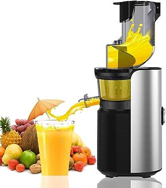 Viesimple Juicer Machines Cold Press Juicers Masticating Juicer for Vegetable Fruit Juice Smoothies Easy to Clean Juicer Extr