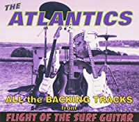 Flight of the Surf Guitar Backing Tracks