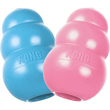KONG - Puppy Toy Natural Teething Rubber - Fun to Chew, Chase and Fetch (Color May Vary)