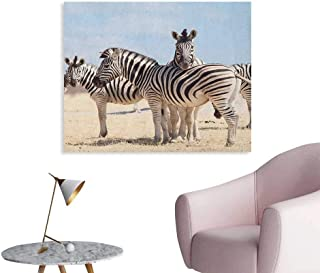 Anzhutwelve Wildlife Art Decor Decals Stickers Three Zebras in Namibia National Park Africa Savannah Safari Theme Poster Paper Pale Blue Black Beige W48 xL32