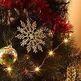 Zogin Colgante de Copo de Nieve para la decoración de árbol de Navidad, 12 Unidades, Color Plata