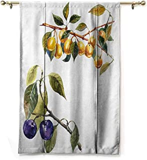 SEMZUXCVO Bedroom Windproof Roman Blinds Tree Watercolor Style Effect Plum Trees with Branches and Leaves Pattern Soft Texture W48 x L64 Reseda Green Earth Yellow