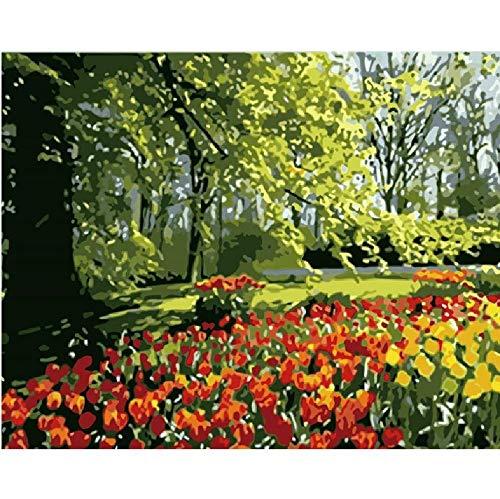 Malen Nach Zahlen DIY Manor GrüNe BäUme Landschaft Leinwand Hochzeitsdekoration Kunst Bild Geschenk 40 * 50CM Kein Bilderrahmen