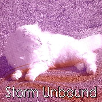 Storm Unbound