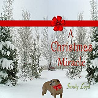 A Christmas Miracle audiobook cover art
