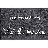 Salonloewe Fußmatte waschbar Hereingedackelt Family 50x75 cm anthrazit mit Motiv Dackel Schmutzfangmatte Fußabtreter Sauberlaufmatte, Türvorleger grau, Hunde