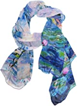WellLee Custom Oblong Chiffon Scarf, Abstract Molecules Science Technology Shawl Wrap Sheer Scarves for Outdoor