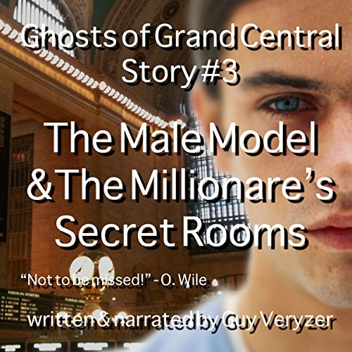 The Male Model & The Millionaire's Secret Rooms audiobook cover art