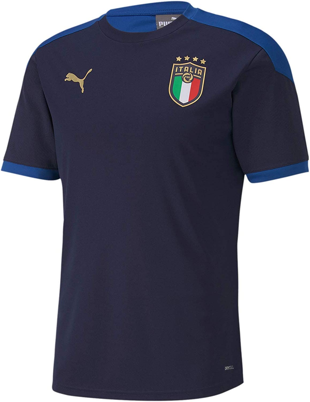 Amazon.com: PUMA Men's FIGC Italian Football Federation Training ...