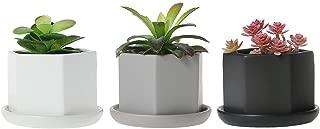 T4U 2.75 Inch Succulent Planter/Small Plant Pot Indoor, Matt Hexgon Ceramic Bonsai Pot Cactus Flower Pots with Porcelain Tray for Desk, Windowsill, Home Decor-Full Color, Pack of 3