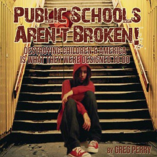 The Public Schools Aren't Broken audiobook cover art