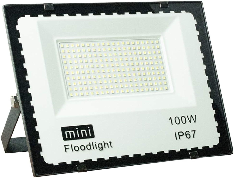 LED Flutlicht, Draussen Quadrat Ingenieurwesen Spielplatz Park Landschaft Erleuchtung 10w-100w Scheinwerfer (Farbe   Weiß light-100w)