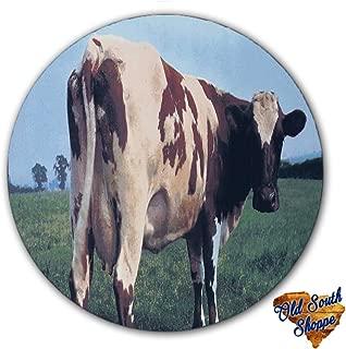 Pink Floyd Atom Heart Mother #1 Slipmat 12 inch LP Scratch Pad Slip Mat Audiophile Vinyl Lovers