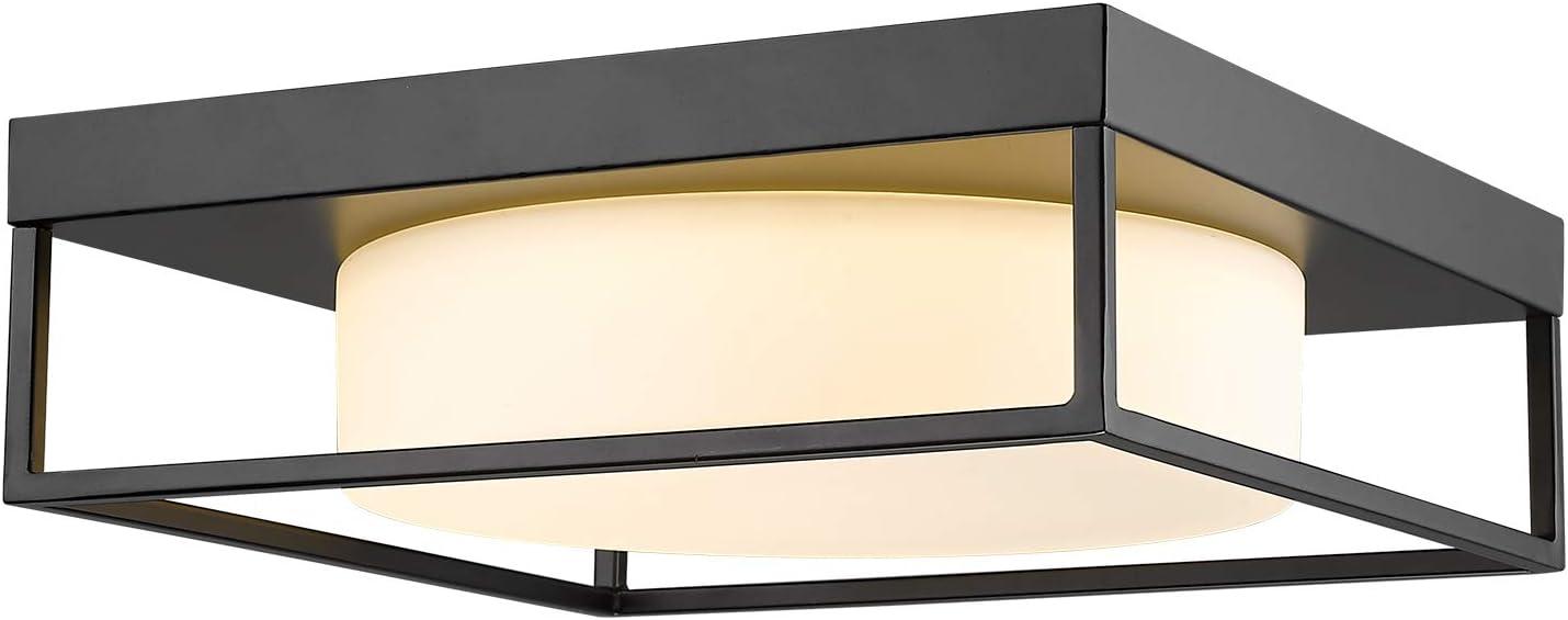 Ceiling Light Fixture CALDION 12 Beauty products Inch Flush 950 M 24W LED Lumen Sale price