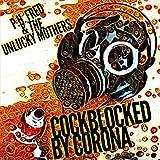 Cockblocked by Corona [Explicit]