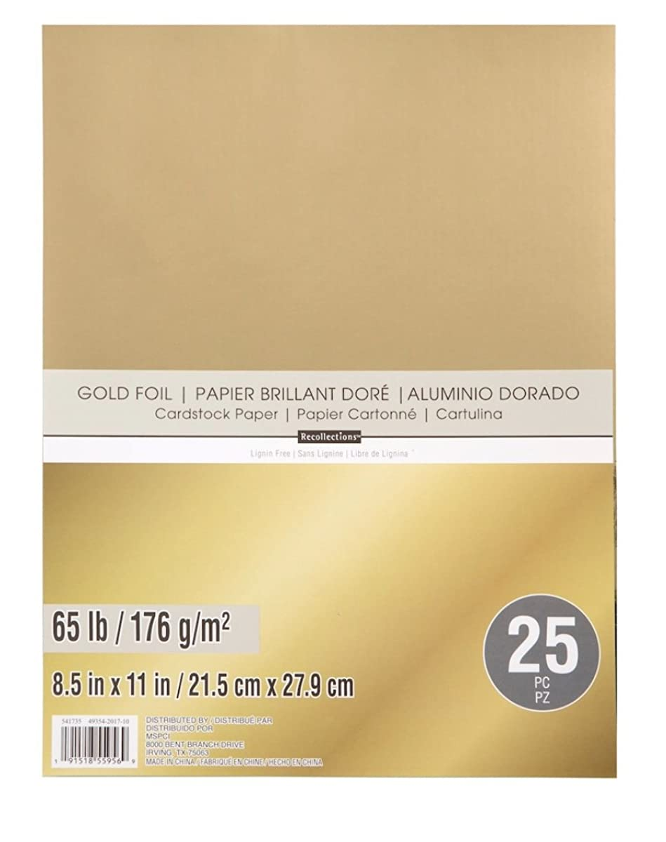Recollections Gold Foil 65lb Cardstock Paper (Single)