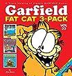 Garfield Fat Cat 3-Pack  22