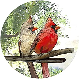 Glass Door & Window Repositionable Sticker Decal. 2 per Package -Shower Doors, Alert Birds, Dogs, Kids, Customers and Guests. Warn, Protect, Safety, Removable, Self Adhesive, Bird Alert. (Cardinal)