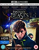 Fantastic Beasts and Where To Find Them (4K UHD + Blu-ray + Digital Download) (2-Disc Set) (Region Free + Fully Packaged Import) streaming video Apr, 2021