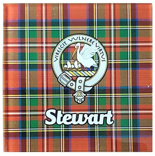 Wallace Tartan Scottish Plaid Objects Oversized Cashmere Scarf Shawl Wrap Winter Warm For Women 77x27 inch