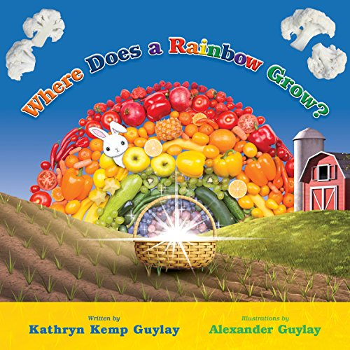 Where Does a Rainbow Grow? audiobook cover art