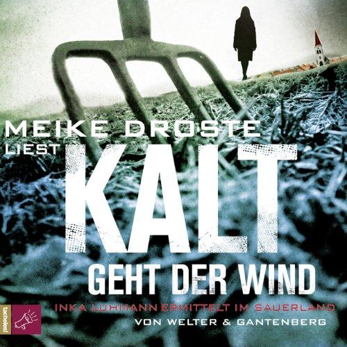 Kalt geht der Wind cover art