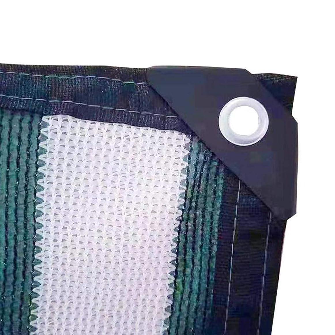 傾斜寺院ステレオタイプシェーディングネット 日焼け止めシェード布、グロメット付きシェードファブリック80%UV保護テープ付きエッジ - ホワイト+グリーン (Size : 6X6M)