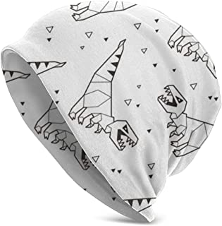 Dinosaurs and Triangles Classic Unisex Winter Warm Knitting Hats Beanie Hats Skull Cap Black